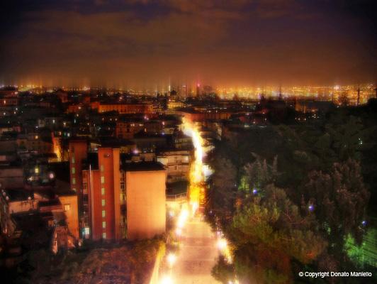 Vision Landscape Lighting Naples : Landscape
